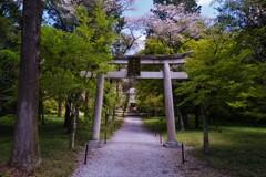 井伊神社 1