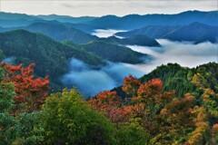 小入谷峠の朝景雲海 11