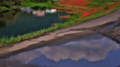 秋空映す水溜り 2