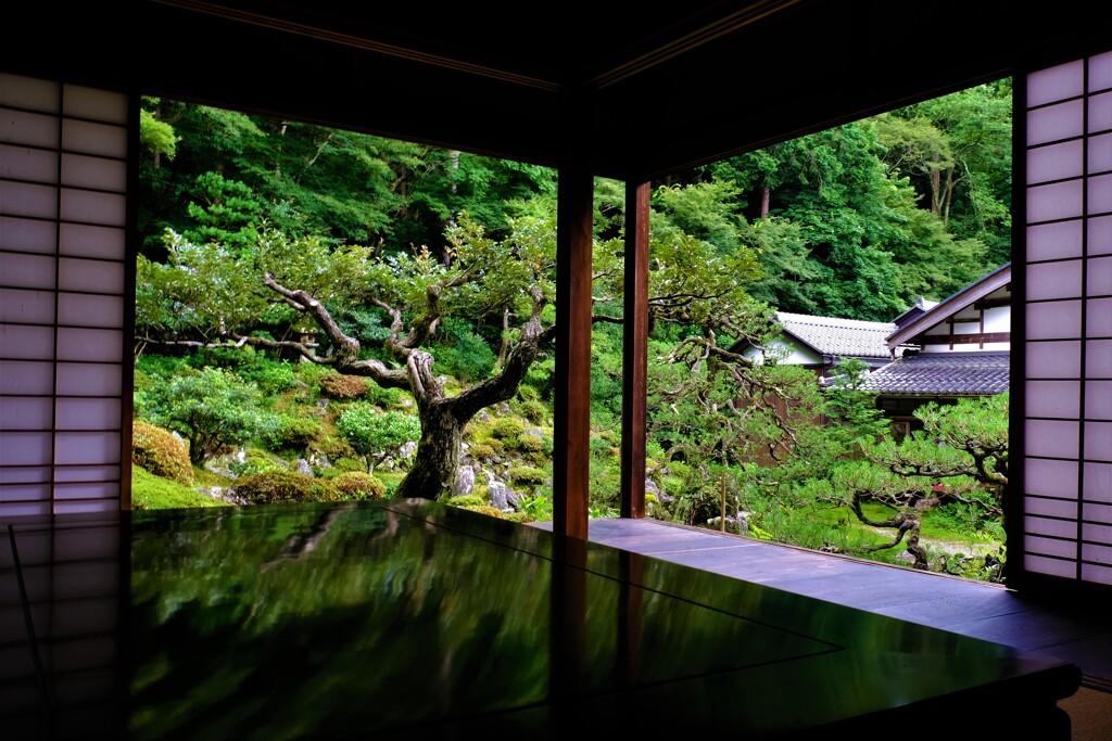 青岸寺庭園 Ⅳ