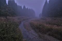 朝霧の針畑川