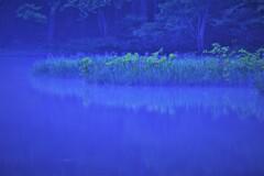 水辺の魔術 1