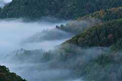 小入谷峠の朝景雲海 4