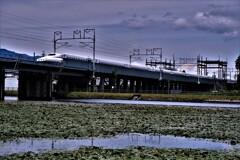 走る新幹線 2