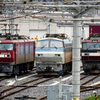 JR貨物 隅田川駅 EF66105