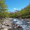 新緑の岩尾別川と羅臼岳