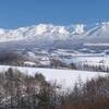 純白の十勝岳連峰