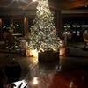 岡野聖史と早めのクリスマスツリー