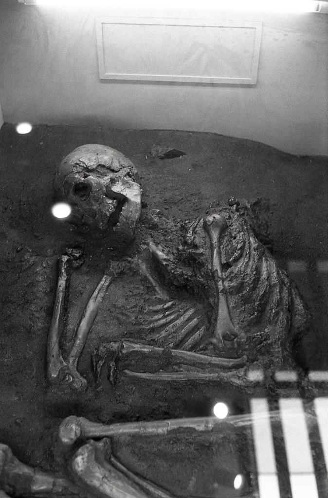 弥生人の埋葬