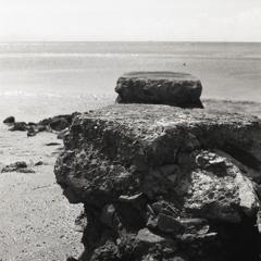 浜辺の遺物