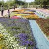 花色の祭典 ~春日井市都市緑化植物園