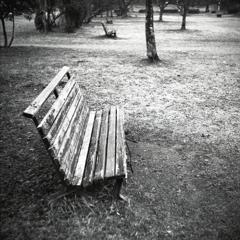 誰もいない公園ベンチ