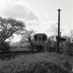 木知原に電車が来た。