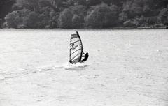湖面を滑る