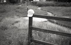 草花園のアポロキャップ
