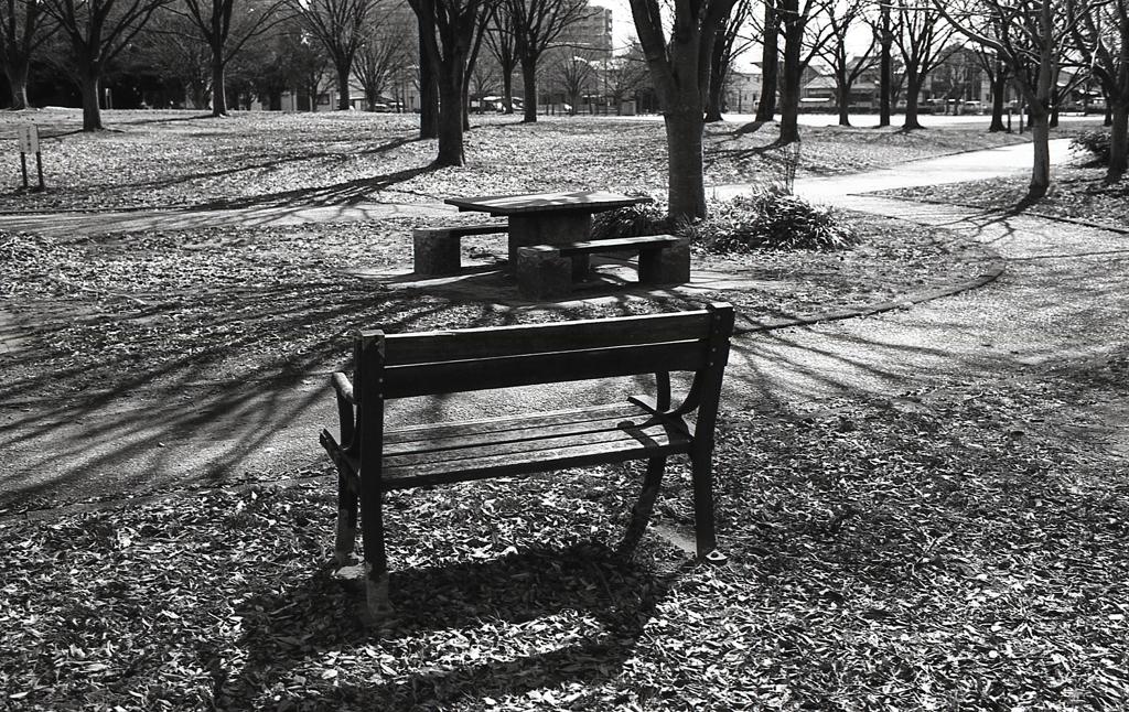 フォマのモノクロは木立の中のベンチに似合う