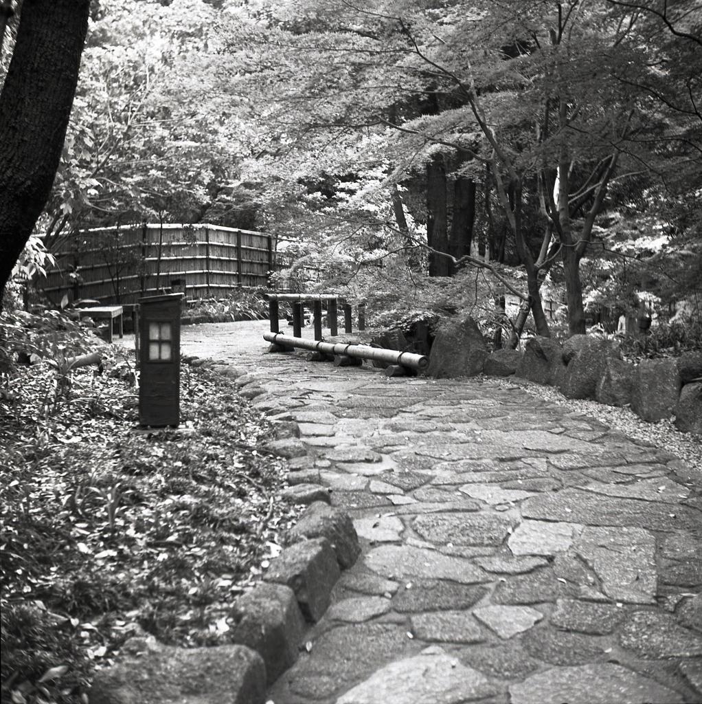 竹垣のある道