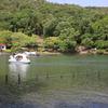 白いボートが眩しかった。 ~春日井市都市緑化植物園