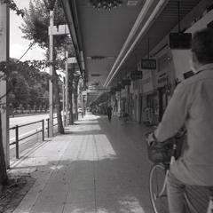 道路左は熱田の森
