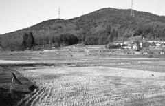 弥勒山・大谷山・道樹山を望む
