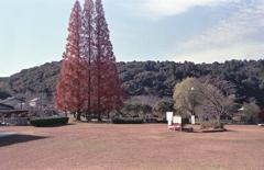石段を下るとそこは定光寺公園です。