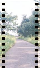 内津川散歩ロード