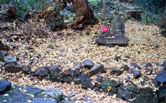 石段脇に秋地蔵