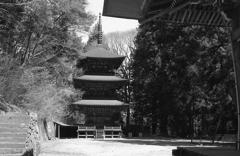 観音堂から三重塔