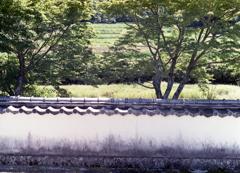 瓦塀の風景
