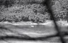 秋深し入鹿の釣り人