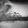 連れ去られた自転車