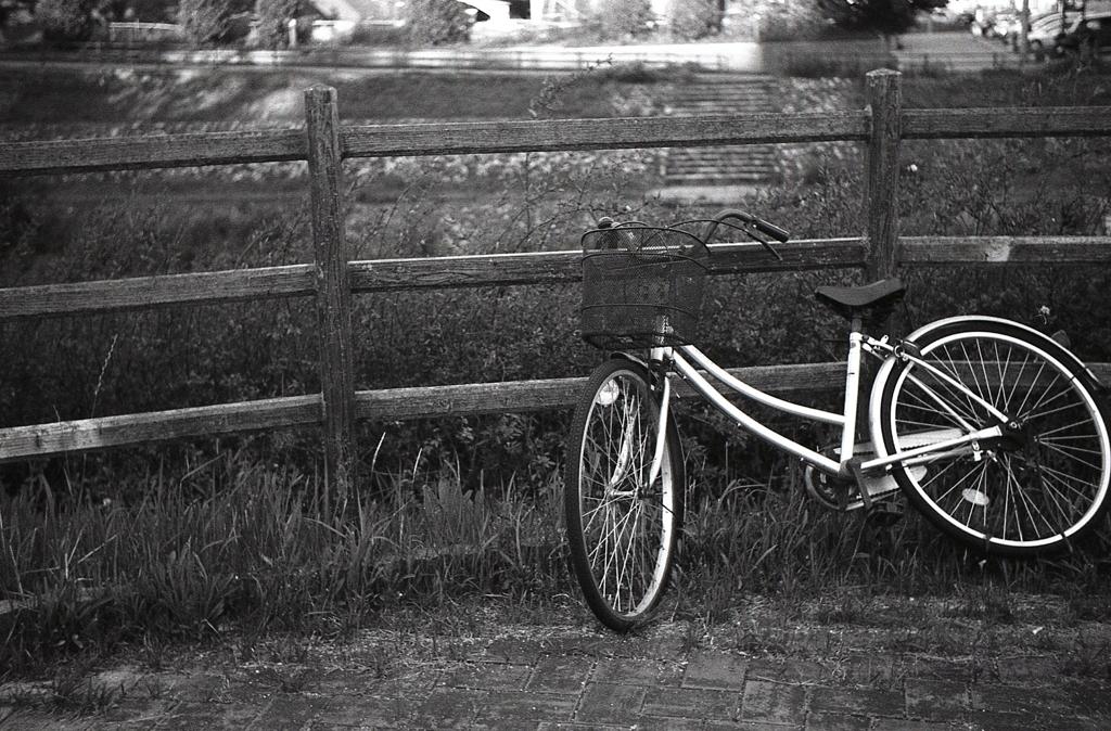 盗難自転車だろう。