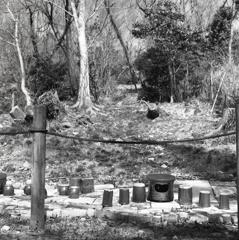 登り窯の跡