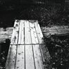 菖蒲池の桟橋