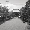 神宮寺の参道