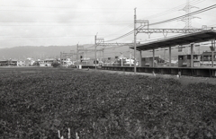 「おおいずみ」駅に入る電車