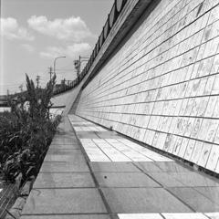 カメラ・フィルム・現像液・スキャナーは違えど…2019年5月の瀬戸川