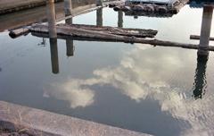 水面の青空と白い雲