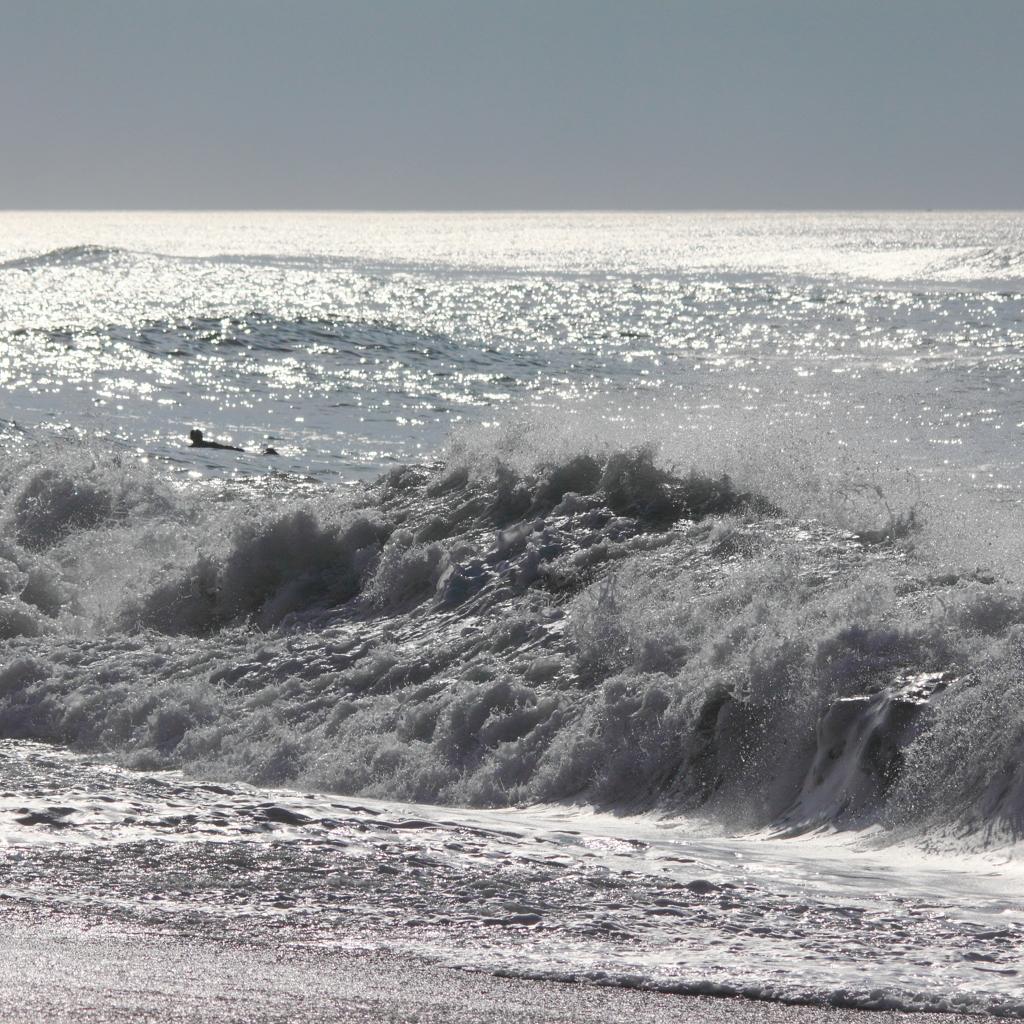 今日の波は良さそうだ。