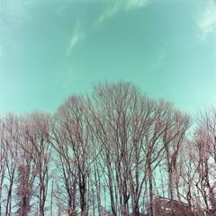 Portra の御代田の空