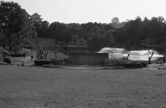 初冬の名城公園 ~2020年11月撮影