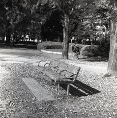 三人掛のベンチだが…