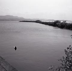 琵琶湖長浜港からⅢ