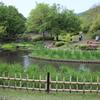 水辺の風景 ~春日井市都市緑化植物園