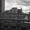 日置橋から