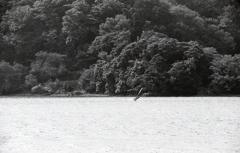 水と山とウインドサーフィン