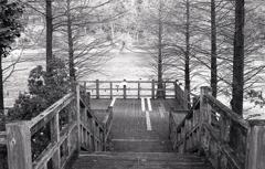 冬の木桟橋