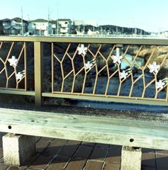 桜の橋ベンチで…