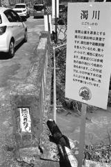濁川(にごりっかわ)
