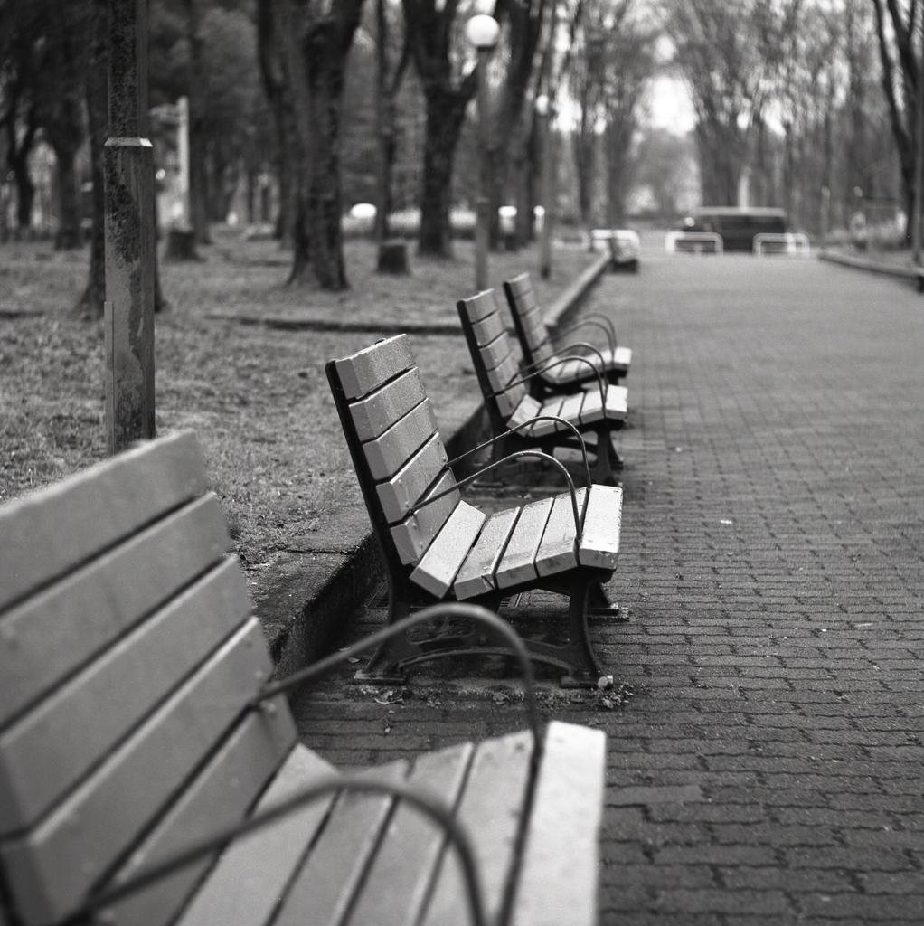 哀愁のベンチ